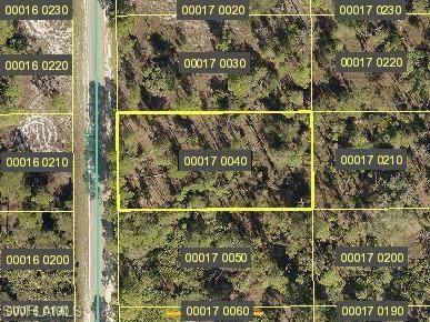 1316 Scott Ave, Lehigh Acres, FL 33972 (#221067609) :: Equity Realty