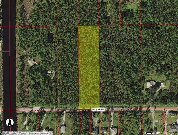 6th Ave NE, Naples, FL 34120 (#221068774) :: Earls / Lappin Team at John R. Wood Properties