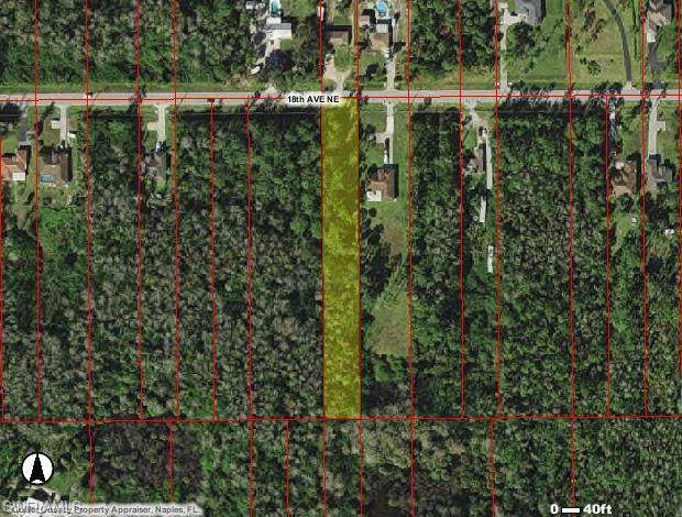 3372 18 Ave NE, Naples, FL 34120 (#221068924) :: Earls / Lappin Team at John R. Wood Properties