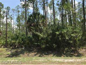 2nd Ave NE, Naples, FL 34120 (MLS #221072036) :: Medway Realty