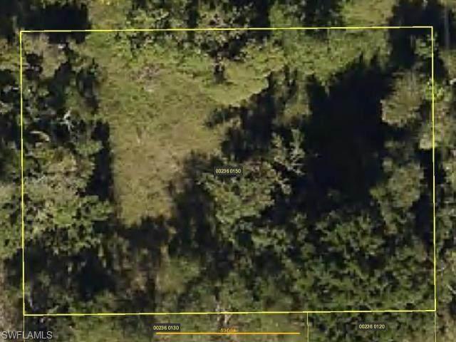 27521 Idaho St, Bonita Springs, FL 34135 (MLS #221074108) :: Premiere Plus Realty Co.