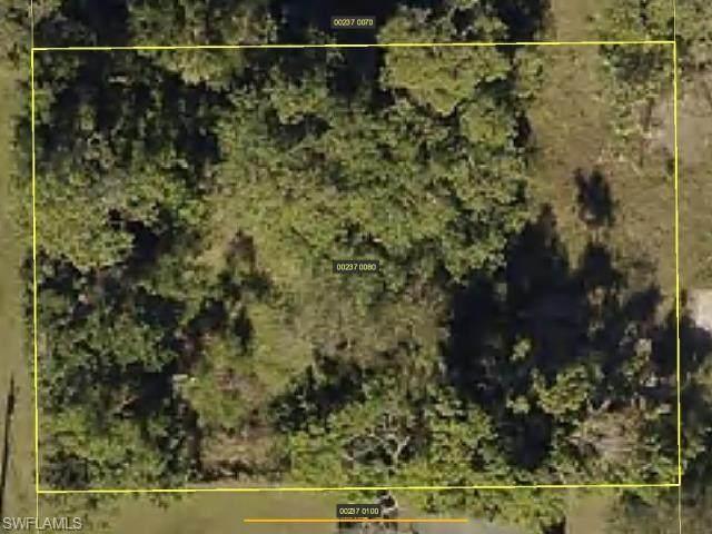 27549 Oregon St, Bonita Springs, FL 34135 (MLS #221074112) :: Premiere Plus Realty Co.