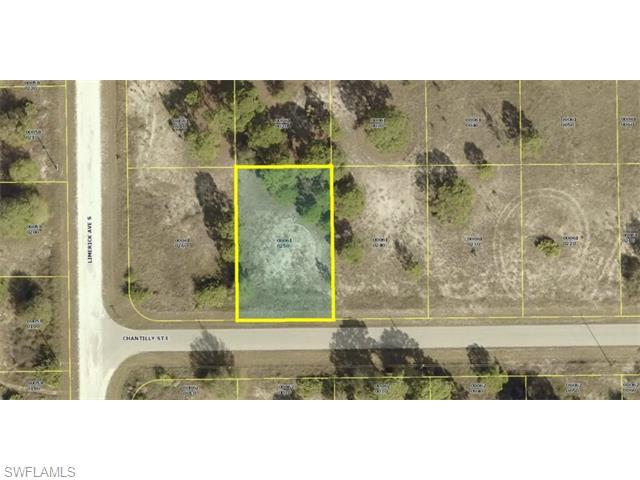 823 Chantilly St E, Lehigh Acres, FL 33974 (MLS #215021072) :: The New Home Spot, Inc.