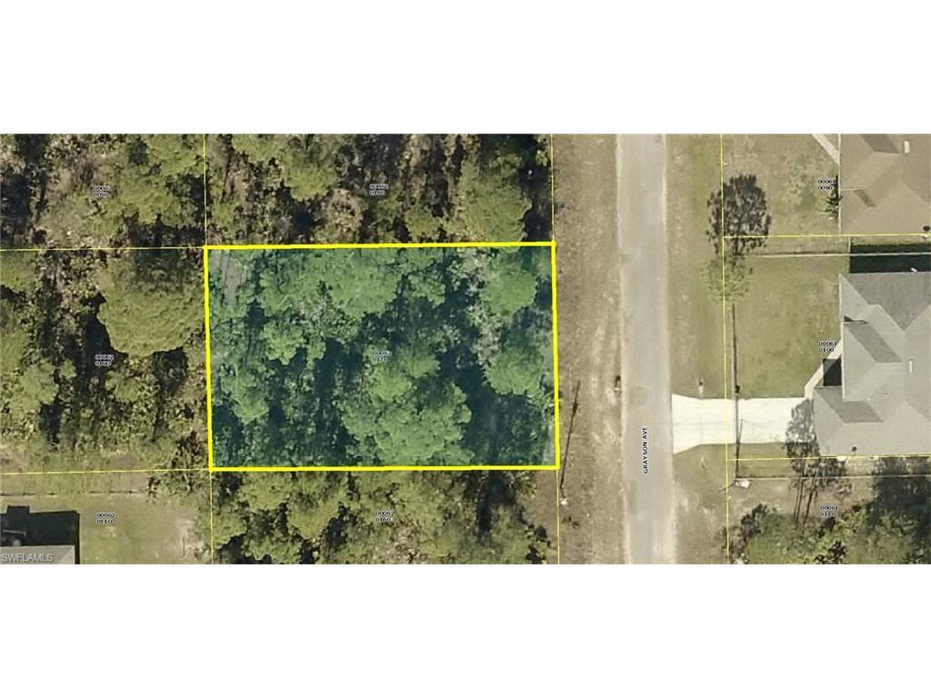 2007 Grayson Ave, Alva, FL 33920 (MLS #215069023) :: The New Home Spot, Inc.
