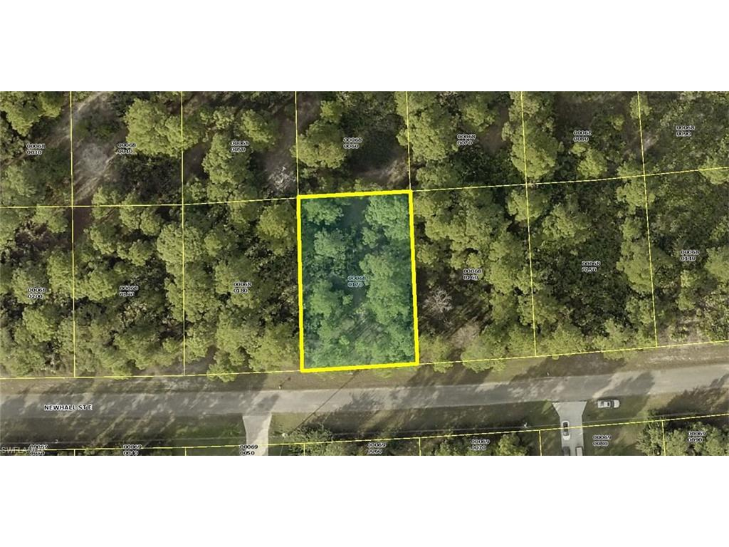 717 Newhall St E, Lehigh Acres, FL 33974 (MLS #216002368) :: The New Home Spot, Inc.