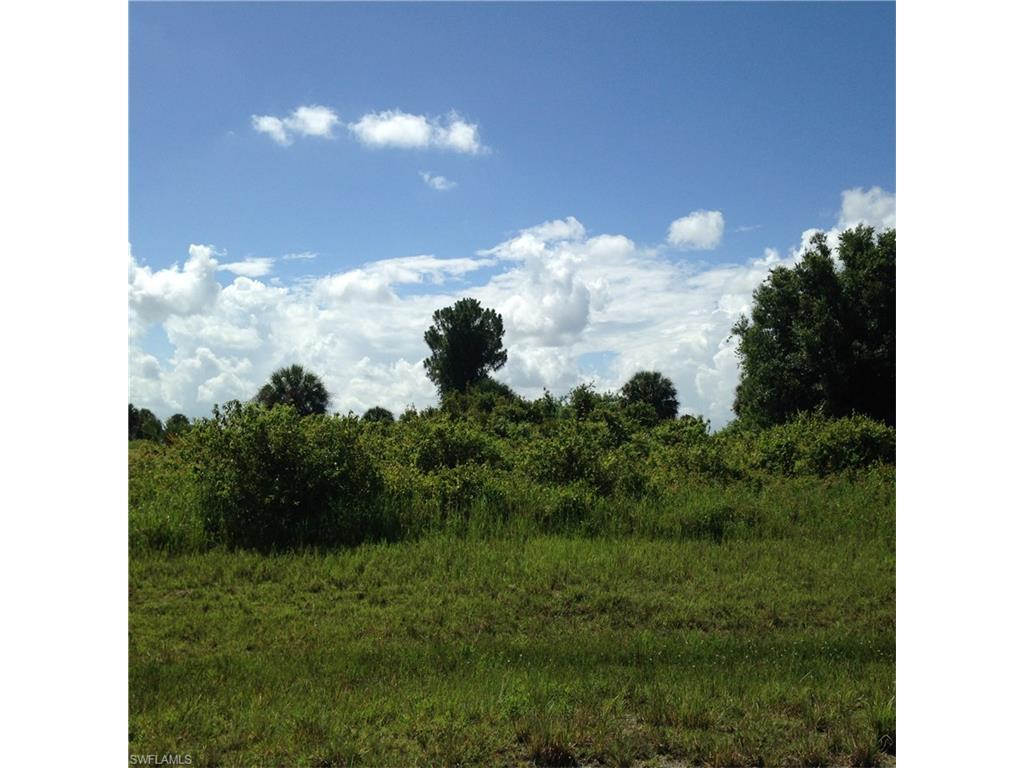 8041 Olive Cir, Labelle, FL 33935 (MLS #216042042) :: The New Home Spot, Inc.