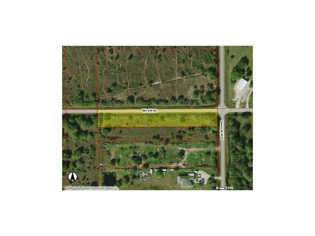 60th Ave NE, Naples, FL 34120 (MLS #216051562) :: The New Home Spot, Inc.