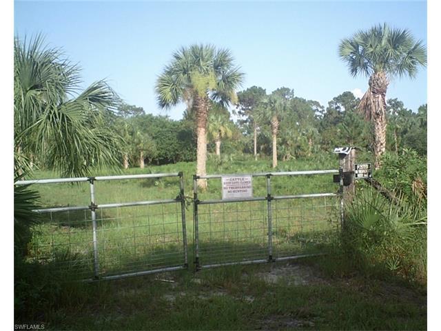 1220 Kapok St SE, Naples, FL 34117 (#216052753) :: Homes and Land Brokers, Inc
