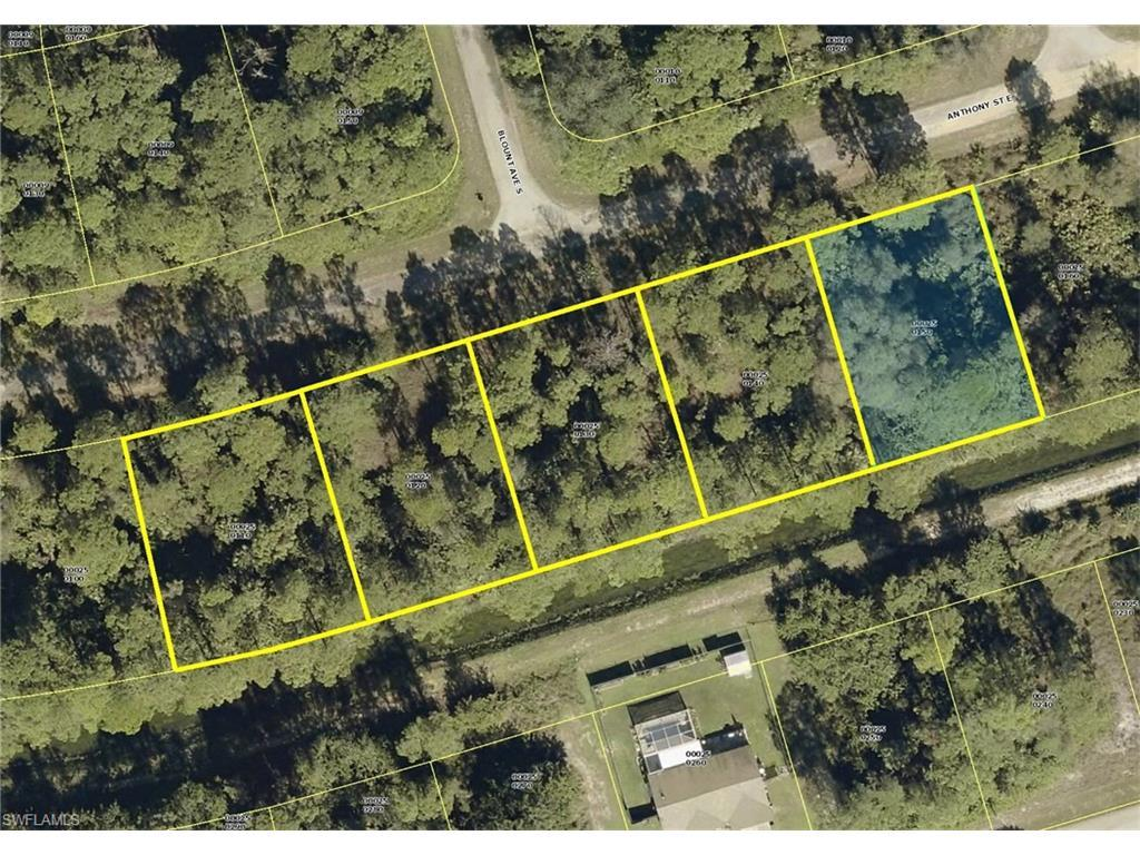 934 Anthony St E, Lehigh Acres, FL 33974 (MLS #216058145) :: The New Home Spot, Inc.
