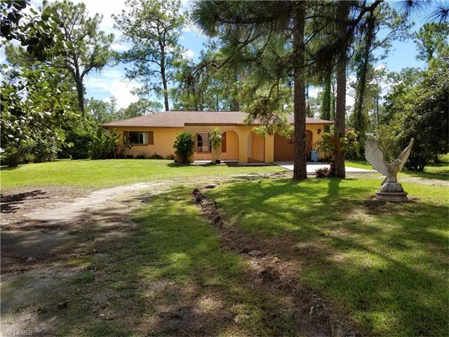 3970 16th Ave NE, Naples, FL 34120 (MLS #216060910) :: The New Home Spot, Inc.