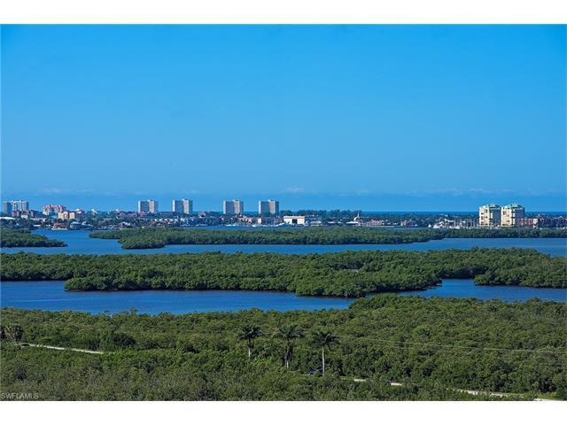 1065 Borghese Ln #1501, Naples, FL 34114 (MLS #216062400) :: The New Home Spot, Inc.