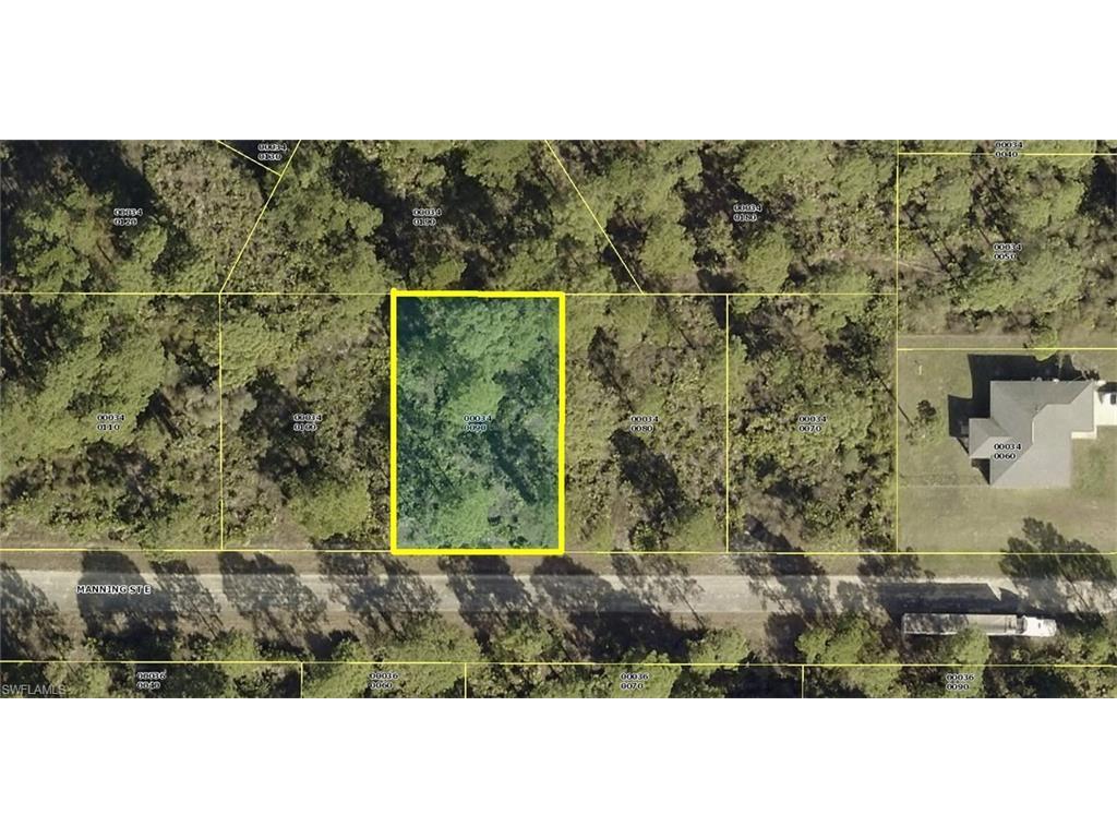 1067 Manning St E, Lehigh Acres, FL 33974 (MLS #216063129) :: The New Home Spot, Inc.