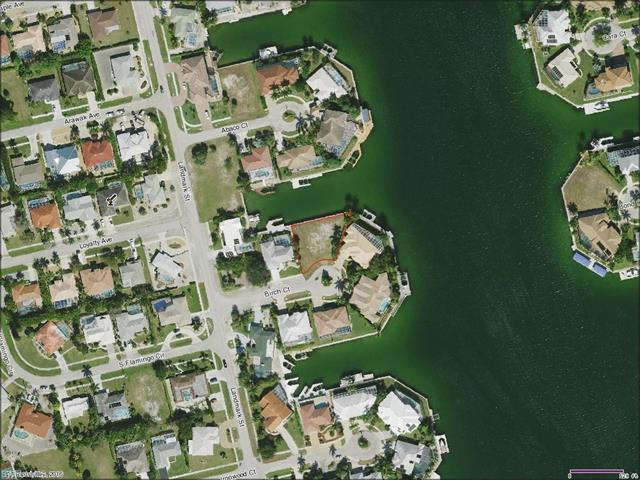 976 Birch Ct, Marco Island, FL 34145 (#216065060) :: Homes and Land Brokers, Inc