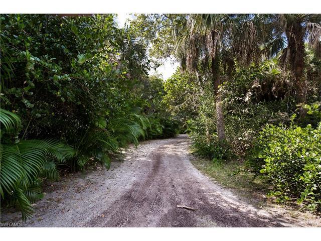 10169 Keewaydin, Naples, FL 34101 (MLS #217005702) :: The New Home Spot, Inc.