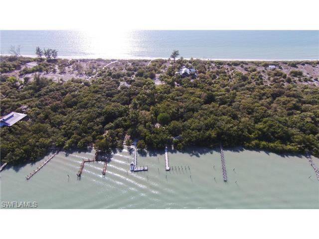 10611 Keewaydin Island, Naples, FL 34101 (MLS #214071258) :: The New Home Spot, Inc.