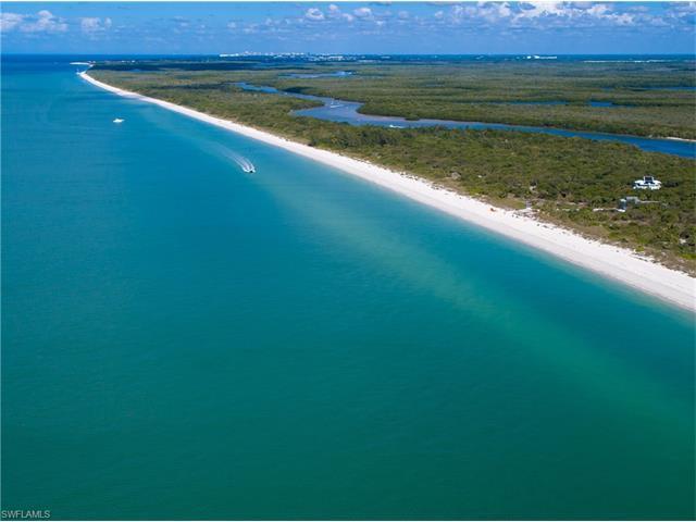 11687 Keewaydin, Naples, FL 34101 (MLS #215041971) :: The New Home Spot, Inc.