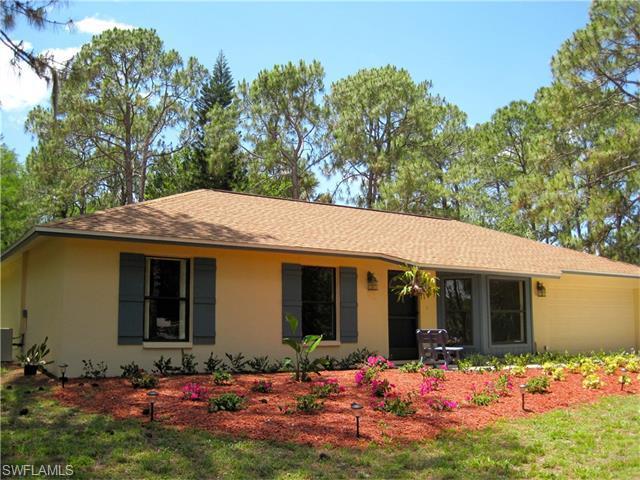 4330 16th Ave NE, Naples, FL 34120 (MLS #216023985) :: The New Home Spot, Inc.