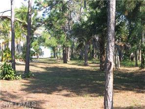 3810 Guilford Rd, Naples, FL 34112 (MLS #217051535) :: Clausen Properties, Inc.