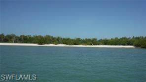 Cape Romano 1, Marco Island, FL 34145 (#220022727) :: The Michelle Thomas Team