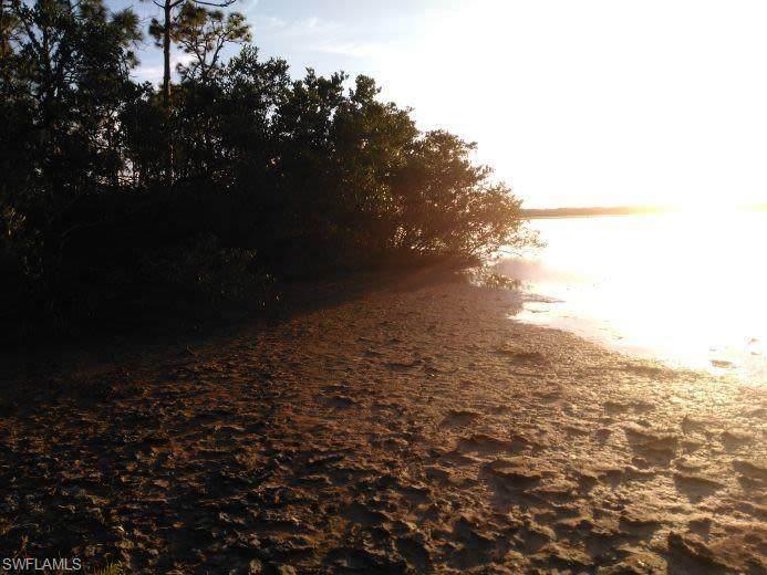 4530 Pine Tree Blvd - Photo 1