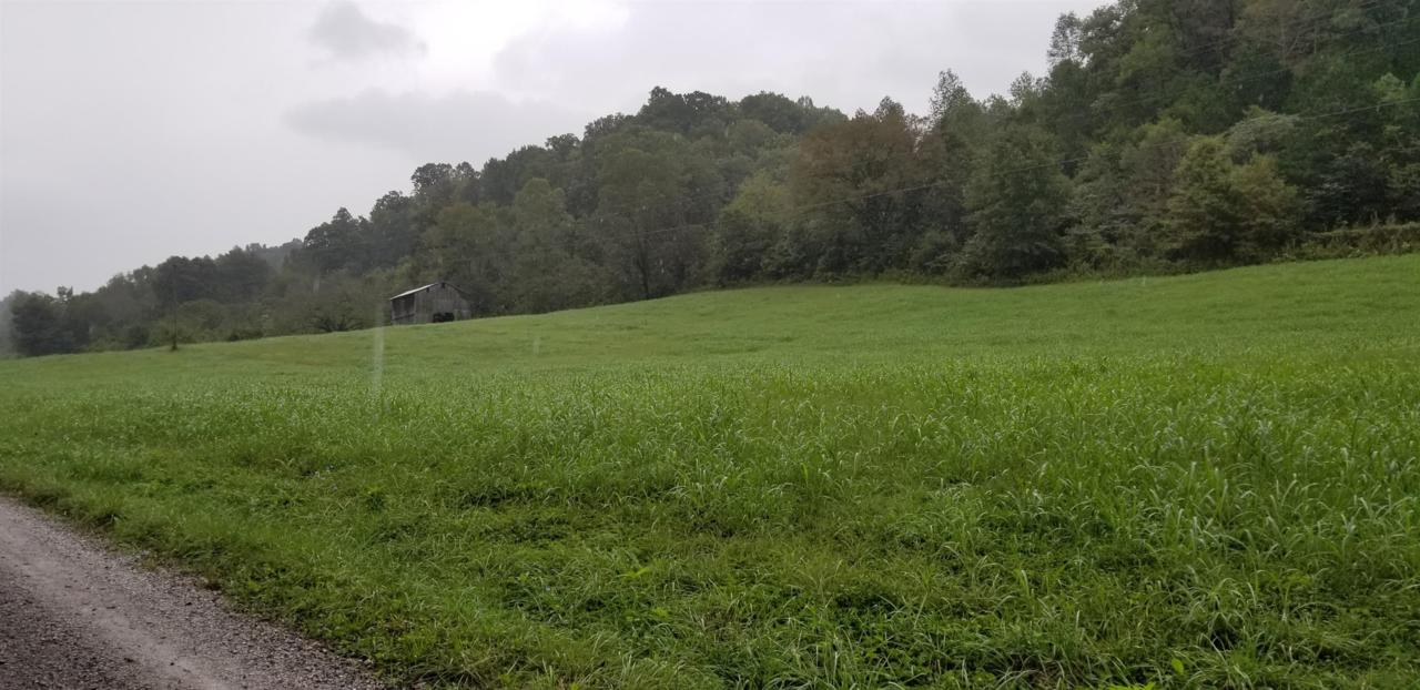 0 Chigger Hollow Rd - Photo 1