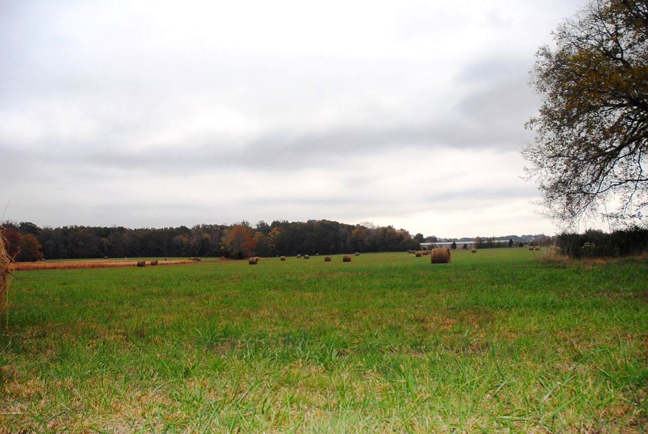 0 Ledford Mill Rd - 35.6 Ac - Photo 1