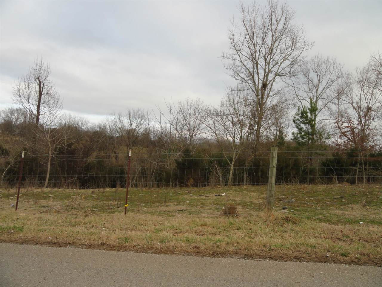 0 Shelbyville Mills Road - Photo 1