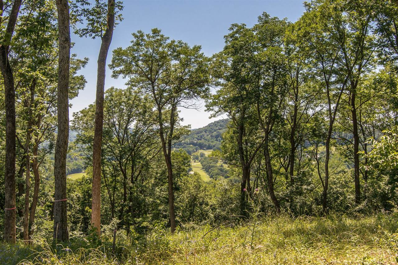 1784 Woodsong Dr (Lot #40) - Photo 1