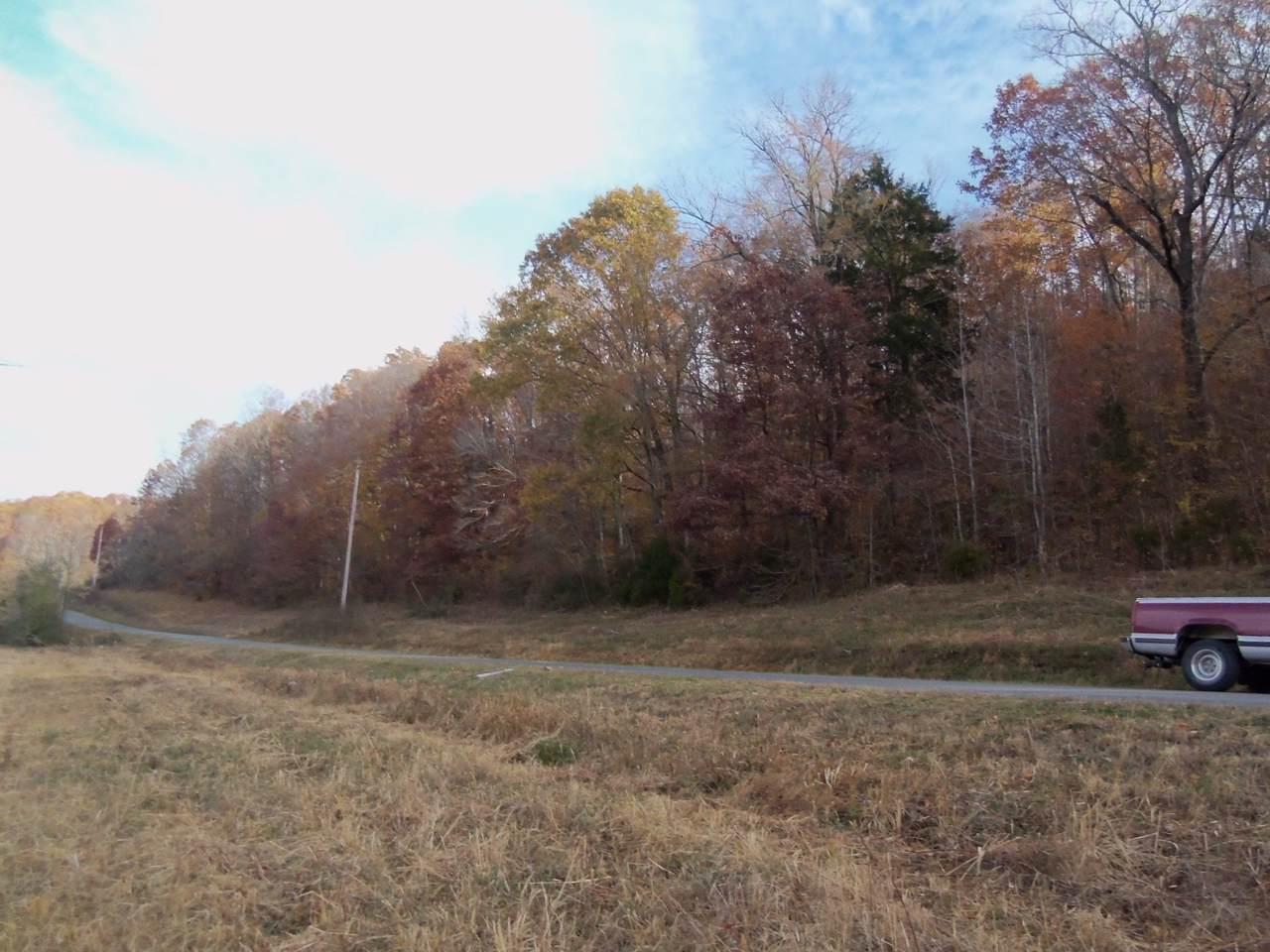 0 Shipmans Creek Rd - Photo 1