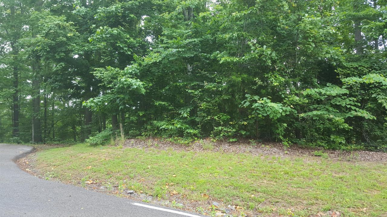 0 Hidden Pointe Lane, Sparta, TN 38583 (MLS #RTC2049941) :: Village Real  Estate