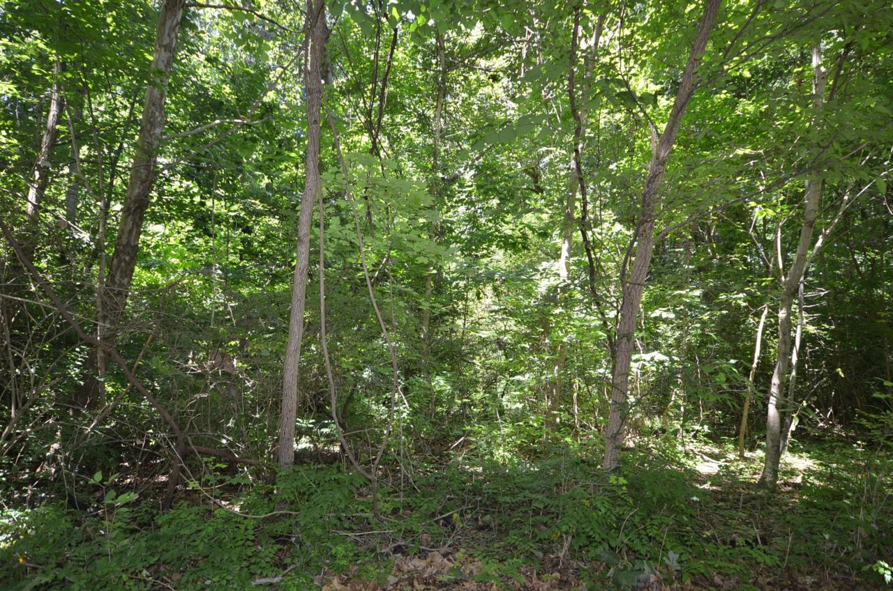 11 Cherokee Trail - Photo 1