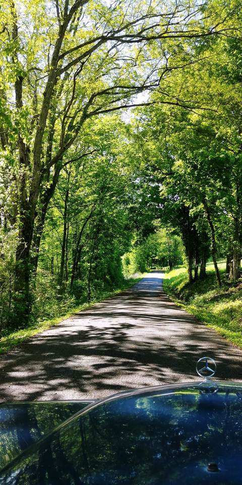4685 Kennedy Creek Road - Photo 1