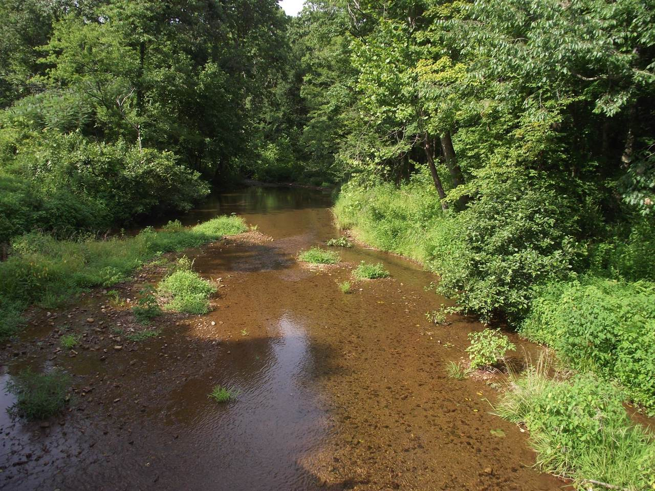 0 Allens Creek Rd - Photo 1
