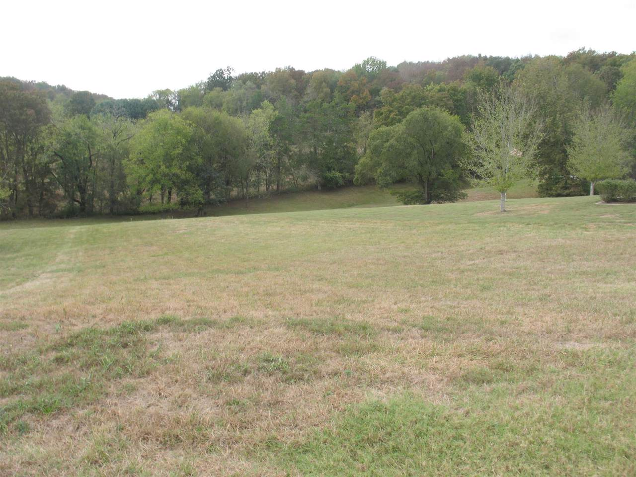 0 Houston Hills Dr - Photo 1