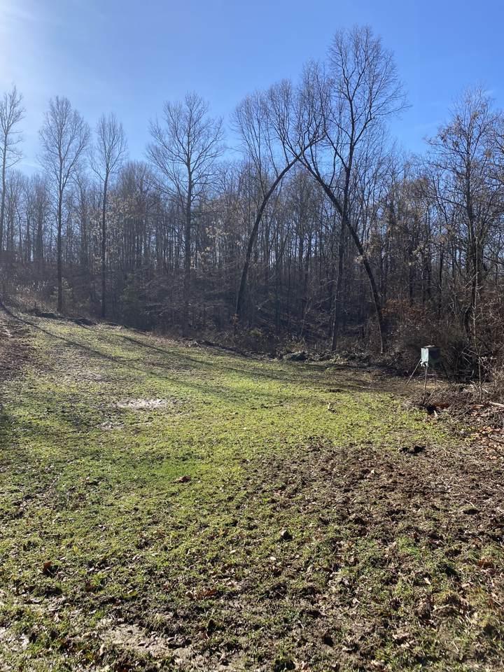 189 Burnt Tree Lane - Photo 1