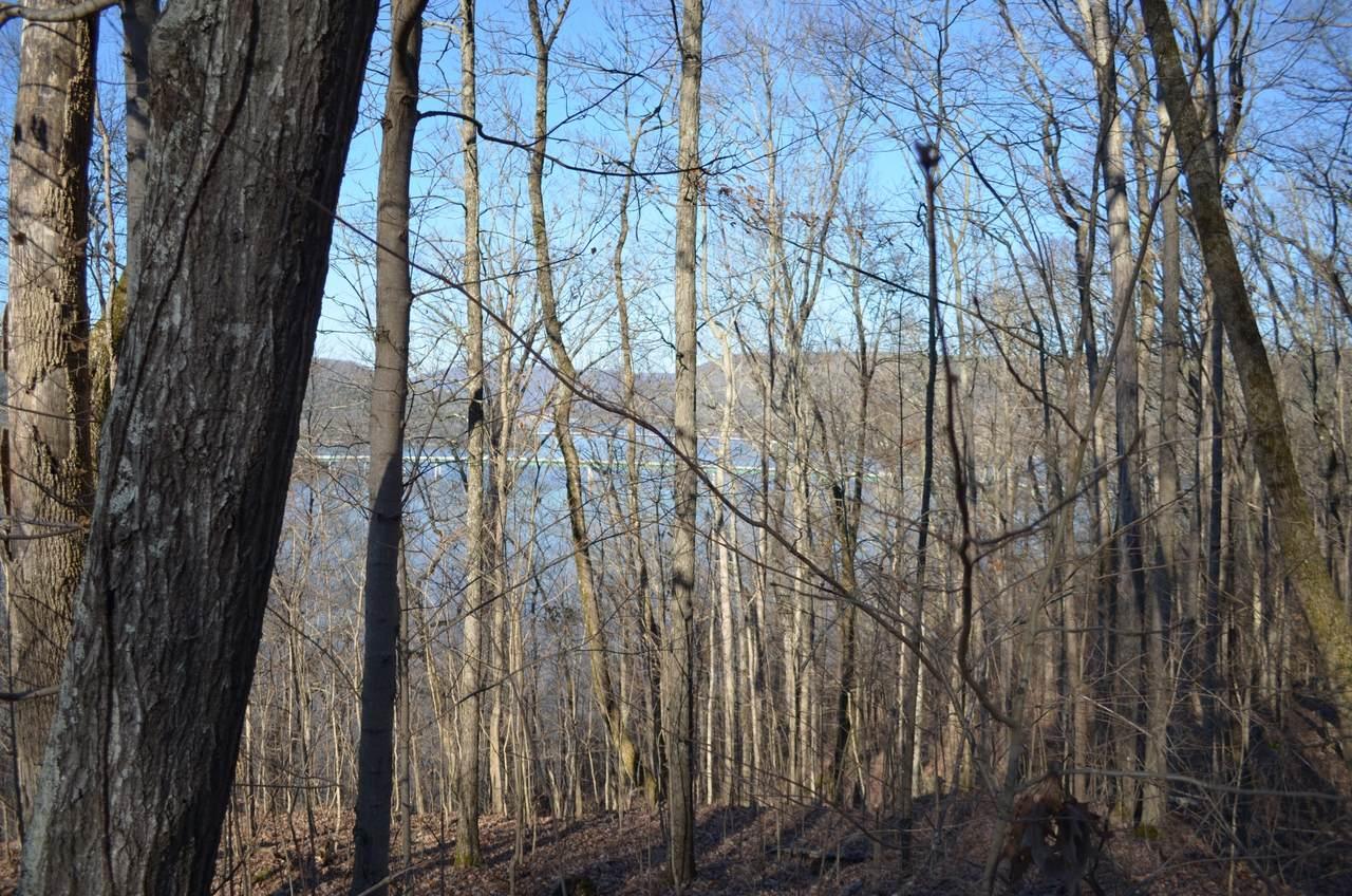 0 Browbend Dr. Lot 14 - Photo 1