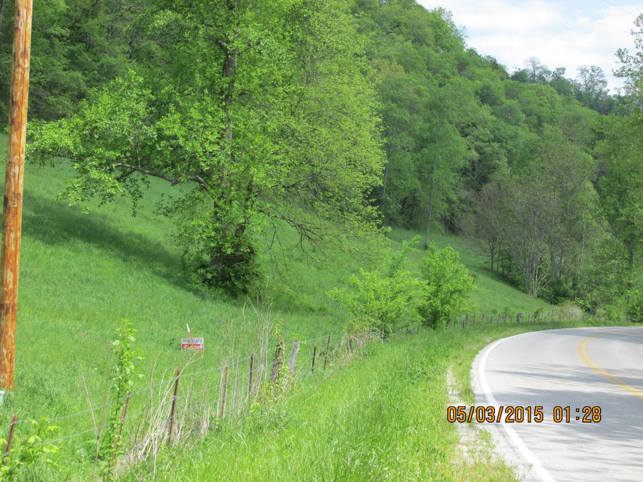 0 Wartrace Highway - Photo 1
