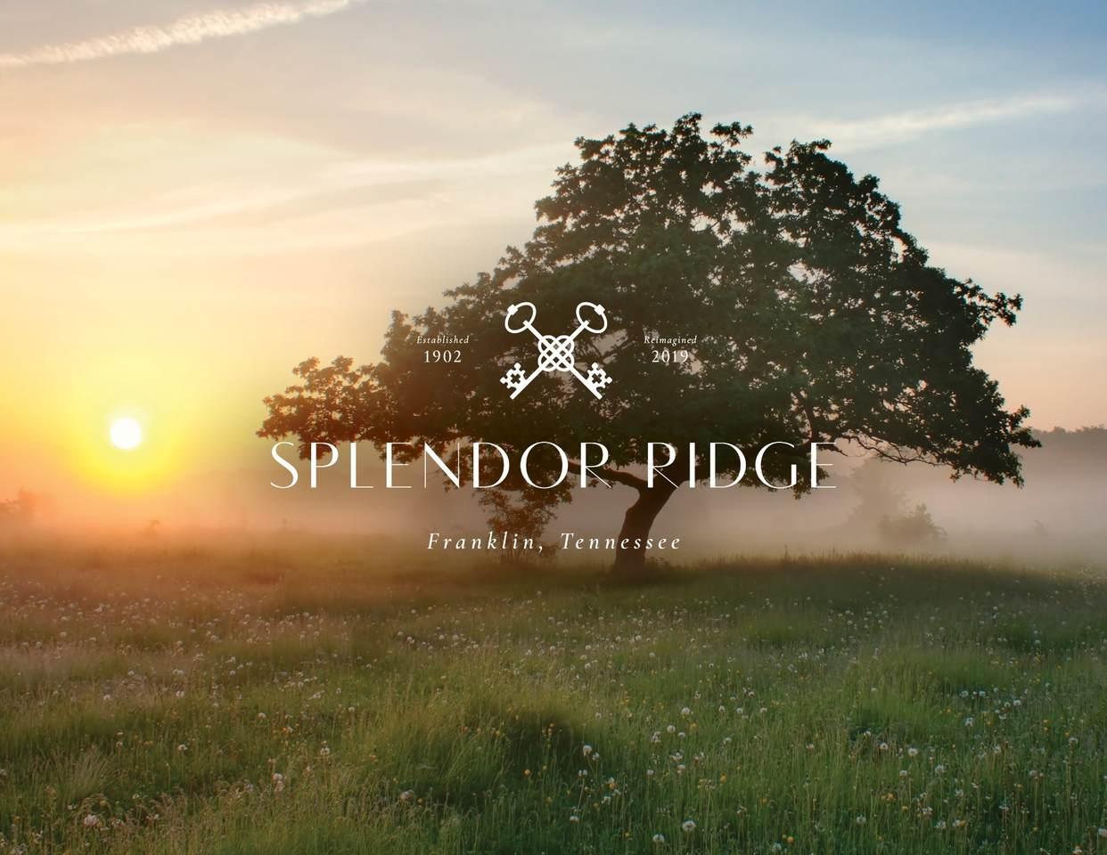 149 Splendor Ridge Drive - Photo 1