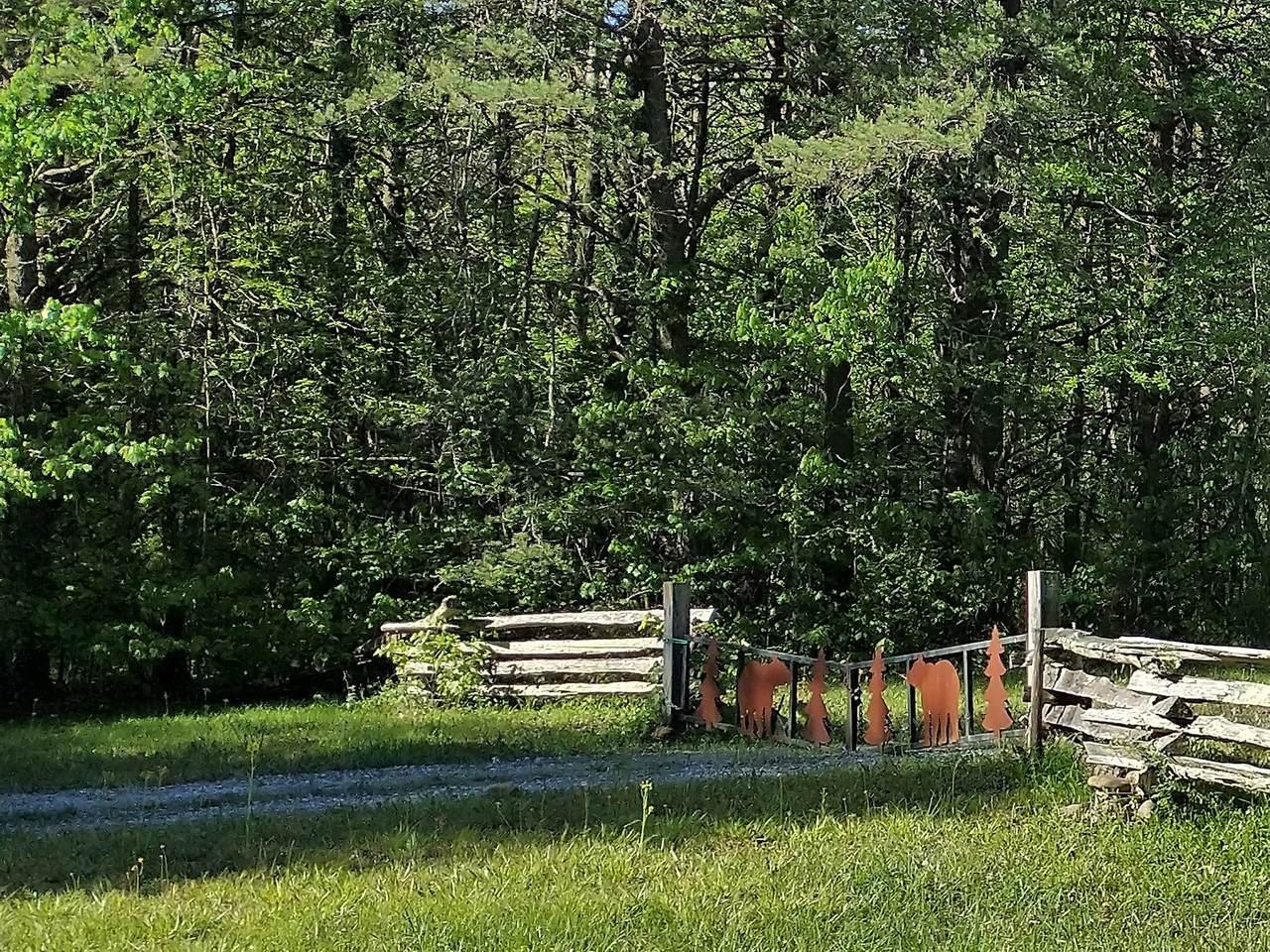 43 Bluff Woods - Photo 1