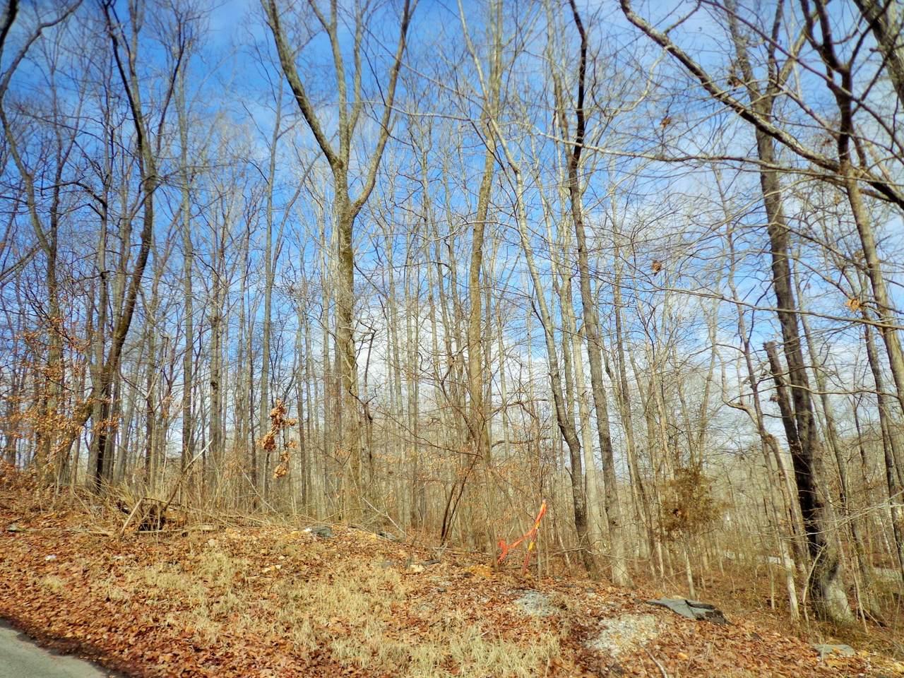 0 Oak Hill Dr - Photo 1