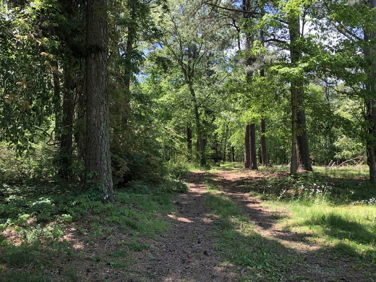1549 Trace Creek Rd - Photo 1