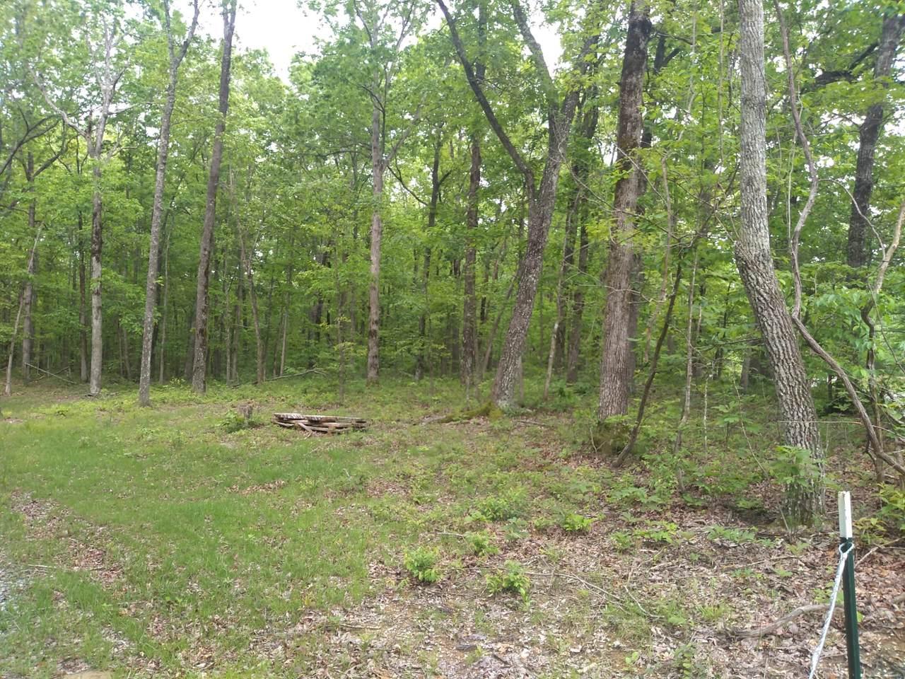 0 Deep Woods Rd - Photo 1