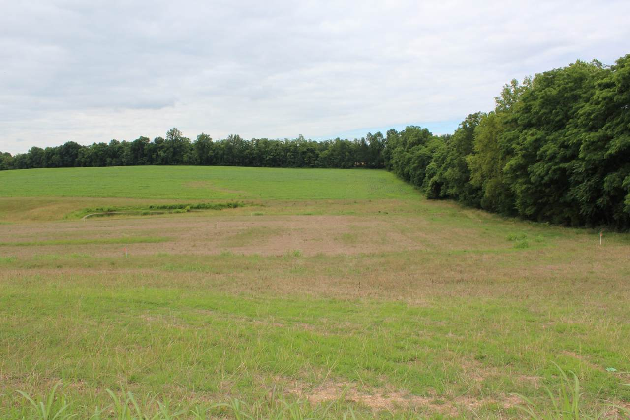 17 Old Hwy. 52 - Photo 1