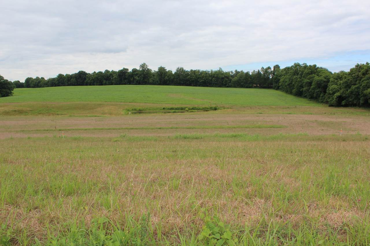 16 Old Hwy. 52 - Photo 1