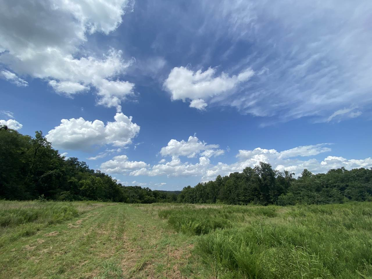 0 Reed Rd - Photo 1