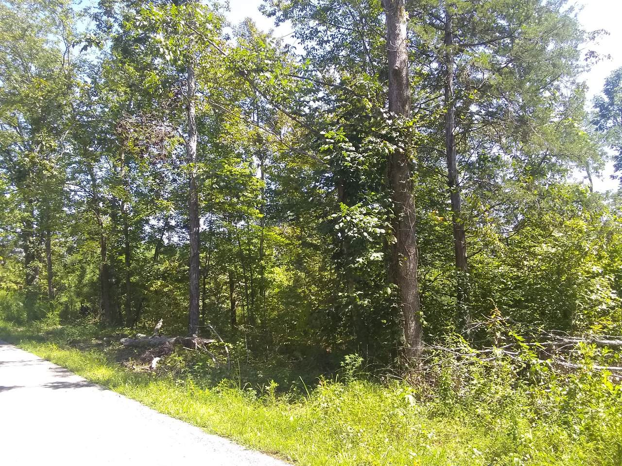 3730 Mouse Tail Rd - Photo 1