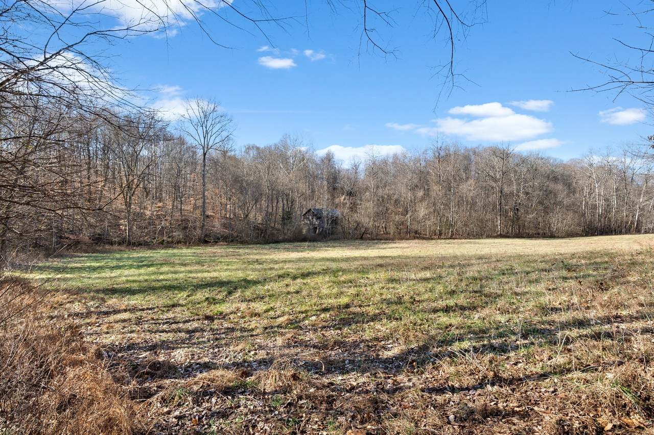 3475 Ashland City Rd Tract 5 - Photo 1