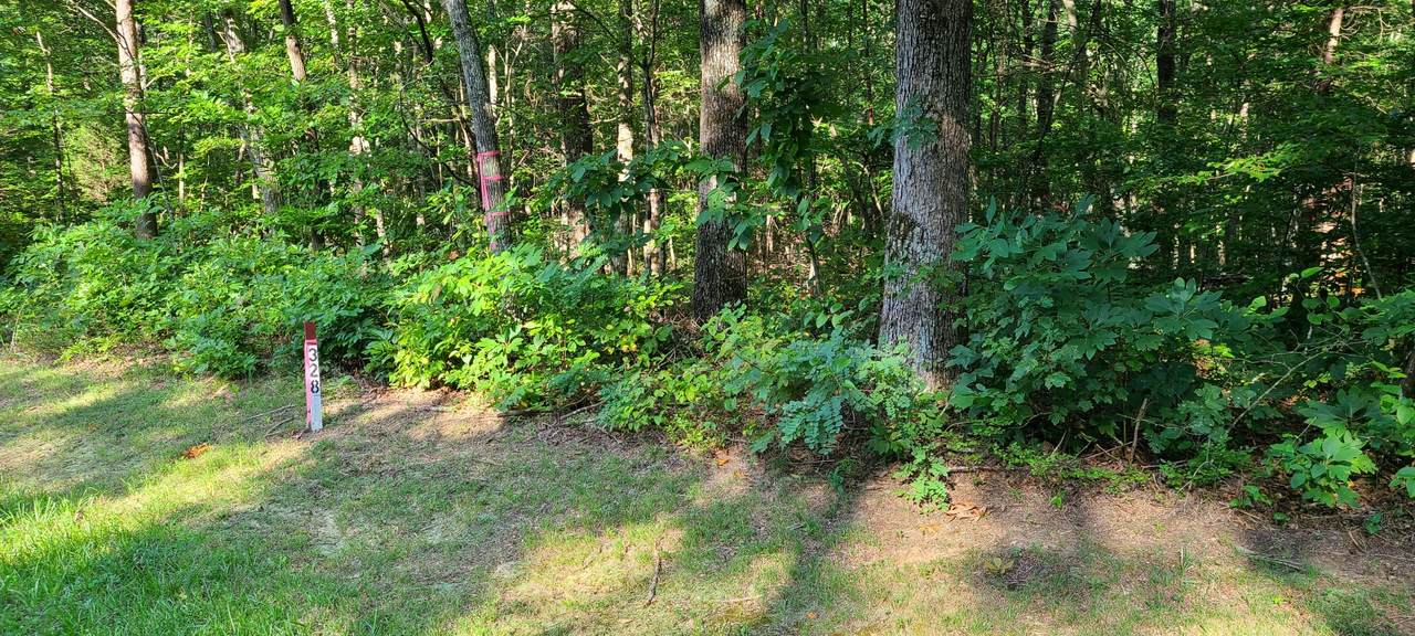 328 Timberwood Trce Lot 328 - Photo 1