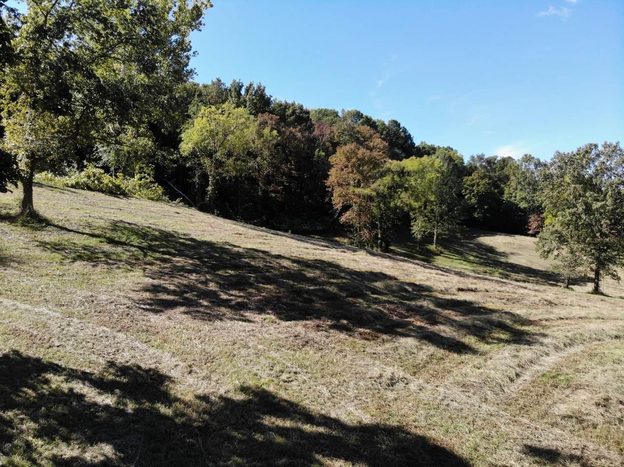 1745 Burke Hollow Rd - Photo 1