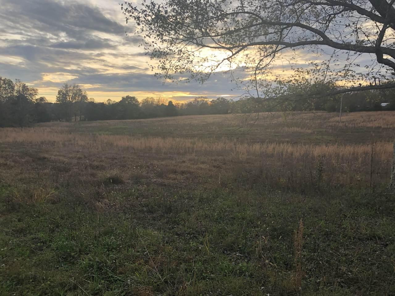 0 Buffalo Valley Rd - Photo 1